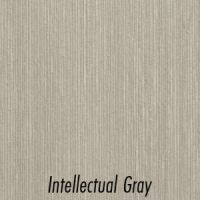 IntellectualGray_w-Name
